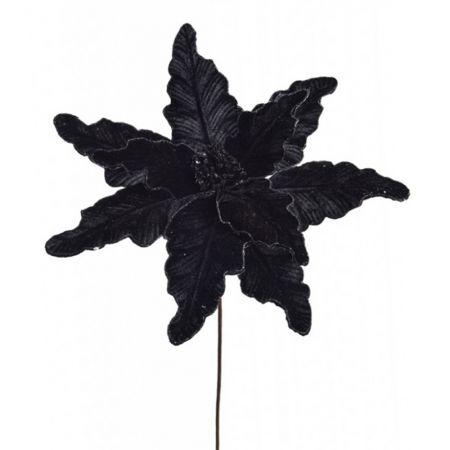 Χριστουγεννιάτικο Αλεξανδρινό λουλούδι Μαύρο 58cm