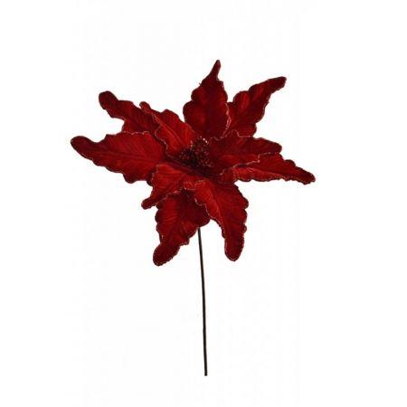 Χριστουγεννιάτικο Αλεξανδρινό λουλούδι Κόκκινο 58cm