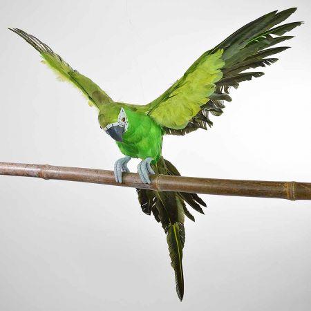 Διακοσμητικός παπαγάλος με ανοιγμένα φτερά Πράσινος 55cm