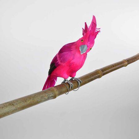 Διακοσμητικό Παπαγαλάκι Ρόζ 34cm