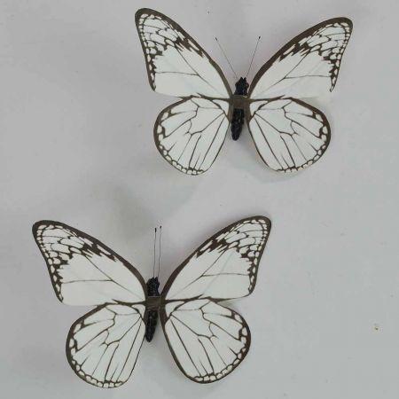 Σετ 2τχ διακοσμητική πεταλούδα Λευκή 20cm