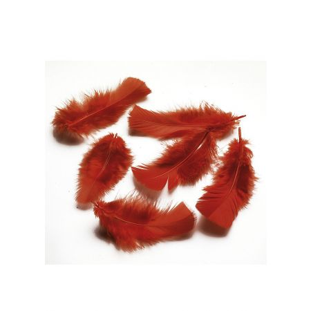 Διακοσμητικά φτερά - πούπουλα κόκκινα, συσκευασία 20gr