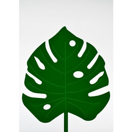Φύλλο Μονστέρα PVC Πράσινο σκούρο 55x42cm