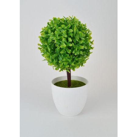 Διακοσμητικό γλαστράκι με φυτό πυξάρι 23cm