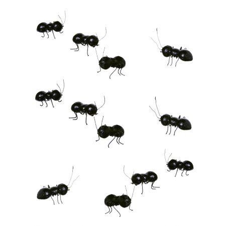 Σετ 12τχ διακοσμητικά μυρμήγκια, 10cm