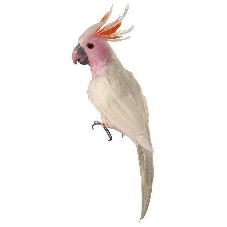 Διακοσμητικός παπαγάλος Κακατούα, Λευκό - Ροζ 40cm