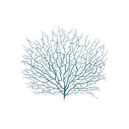 Διακοσμητική δέσμη με κοράλλια Μπλε 45x40cm
