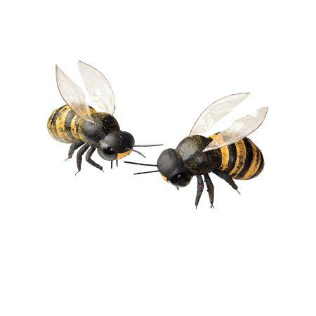 Σετ 2 τεμαχίων διακοσμητικές μέλισσες, 15cm