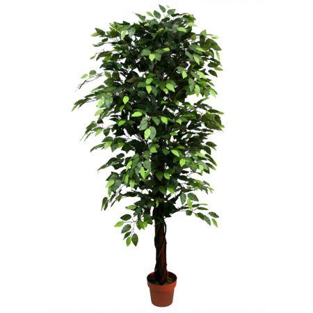 Τεχνητό δέντρο φίκος - Benjamini σε γλάστρα Πράσινο 180cm