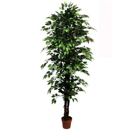 Τεχνητό δέντρο φίκος - Benjamini σε γλάστρα Πράσινο 210cm