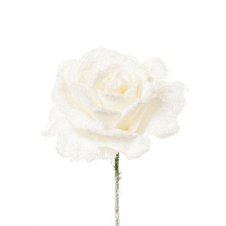 Tριαντάφυλλο χιονισμένο Λευκό, 21cm