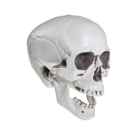 Διακοσμητικό κρανίο - νεκροκεφαλή Γκρι 20x16 cm