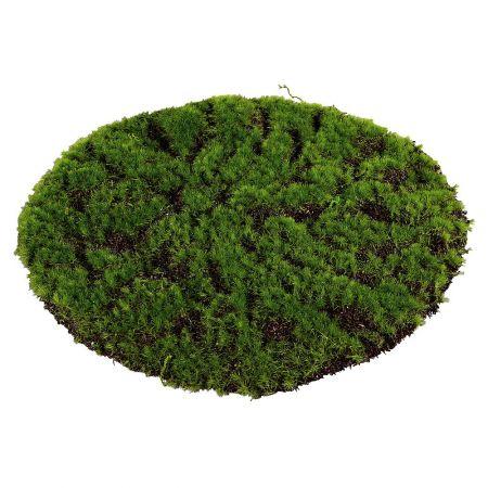 Διακοσμητικό Moss γκαζόν στρογγυλό 25cm