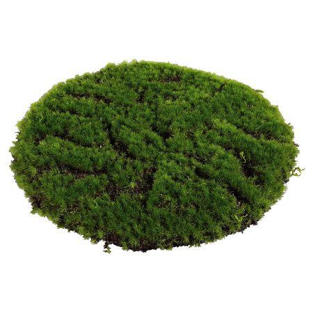 Διακοσμητικό Moss γκαζόν στρογγυλό 30cm