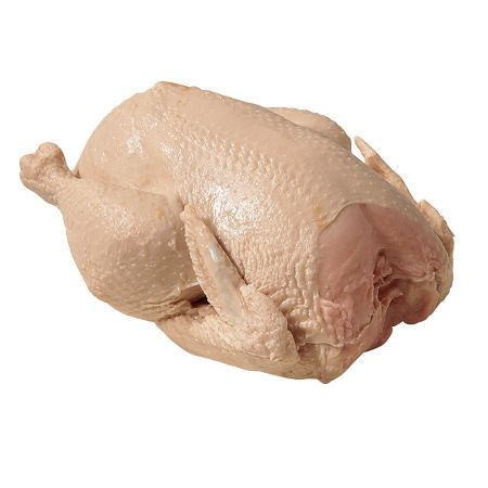 HQ Διακοσμητικό ωμό ολόκληρο κοτόπουλο απομίμηση 20x16cm