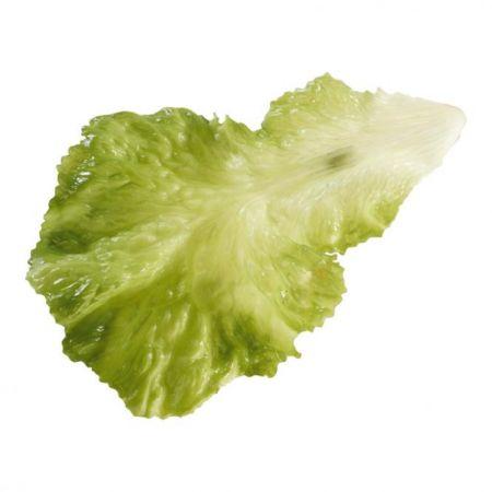 HQ Σετ 3τχ Διακοσμητικά φύλλα μαρουλιού Πράσινα απομίμηση x25cm