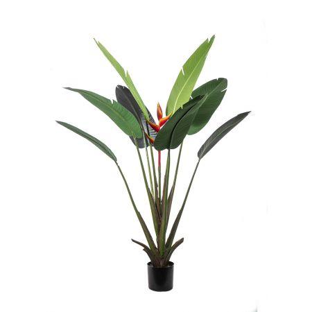 Τεχνητό Φυτό-Στρελίτσια σε γλάστρα 180cm