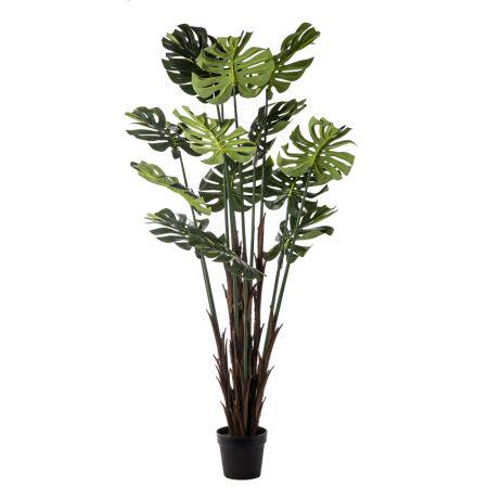 Διακοσμητικό τεχνητό φυτό Monstera σε γλάστρα 170cm
