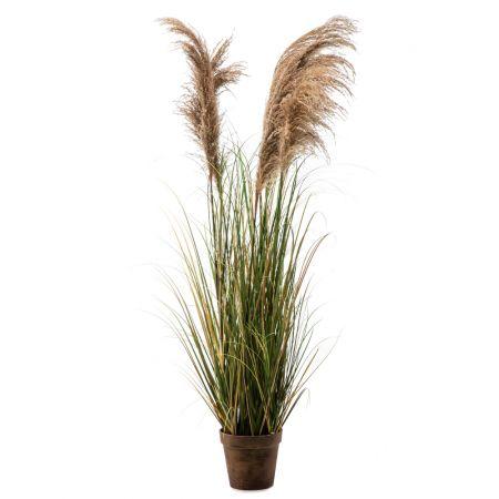 Διακοσμητικό τεχνητό φυτό Pampas Grass σε γλάστρα 170cm