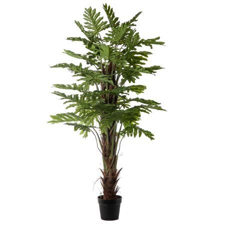 Διακοσμητικό τεχνητό φυτό Σέλλουμ σε γλάστρα 170cm