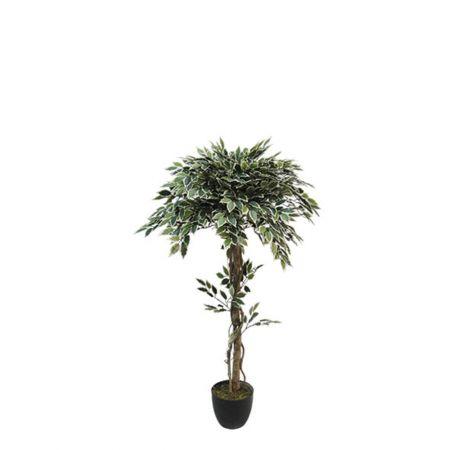 Τεχνητό δέντρο φίκος - Benjamini δίχρωμος σε γλάστρα 120cm