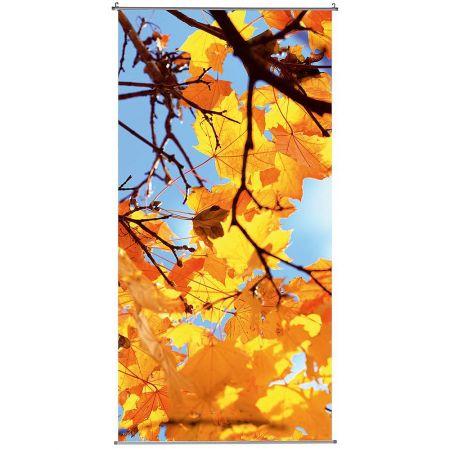 Αφίσα - banner Φθινοπωρινό δέντρο 100x200cm