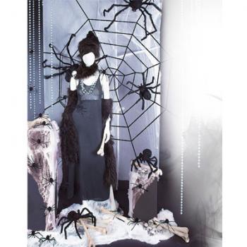 Mrs Spider